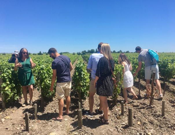 saint-emilion-wine-tour-3