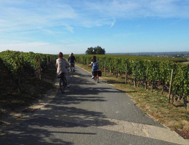 rustic vines tours, bordeaux wine tour, electric bike trip, Saint Emilion visit