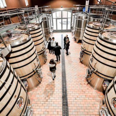 rustice vines wine tours 3